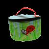 Ladybug nebulizer case