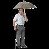 T Handle Umbrella Cane