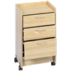 Hausmann Mobile Cabinet