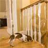 Indoor Banister Shield Protector