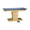 Bailey Professional Hi-Low Treatment Tables