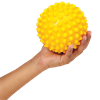 FitBALL Sensory Ball