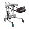 Provider Rise And Go Stable Walker