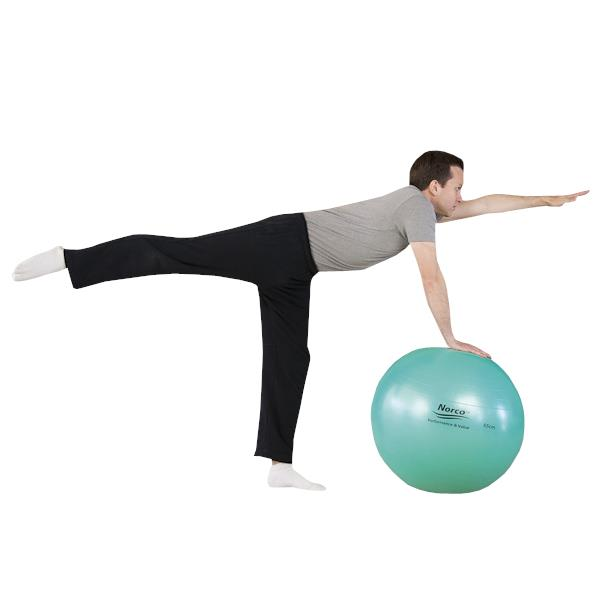 ... & Therapy Fitness products Exercise Balls Norco Exercise Ball
