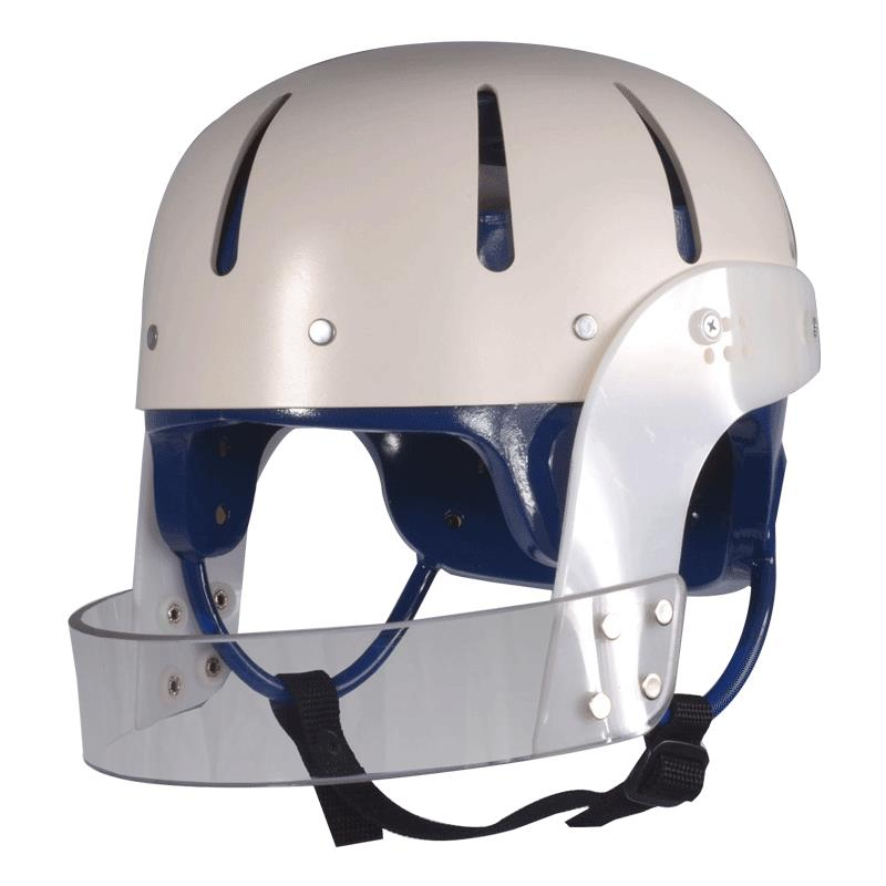 Danmar Hard Shell Helmet With Face Bar Head Protection