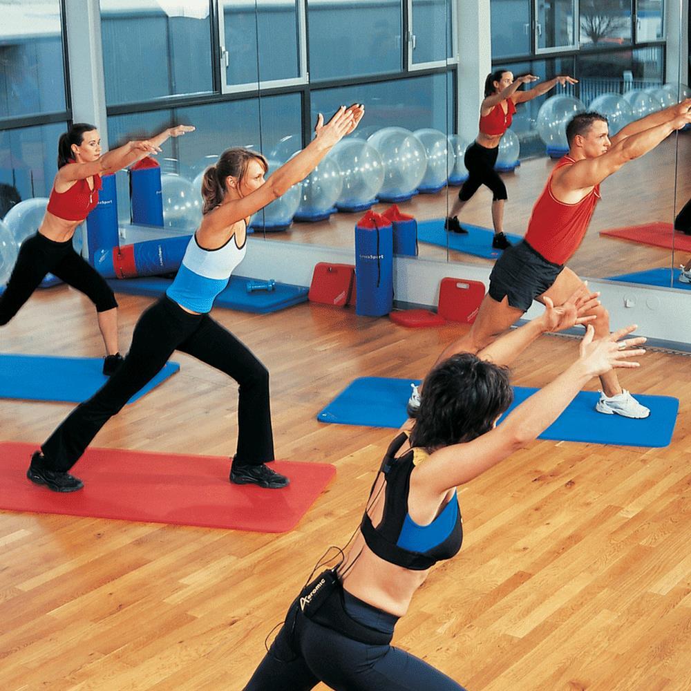 Workout Mat Primark: ArmaSport Exercise Mats