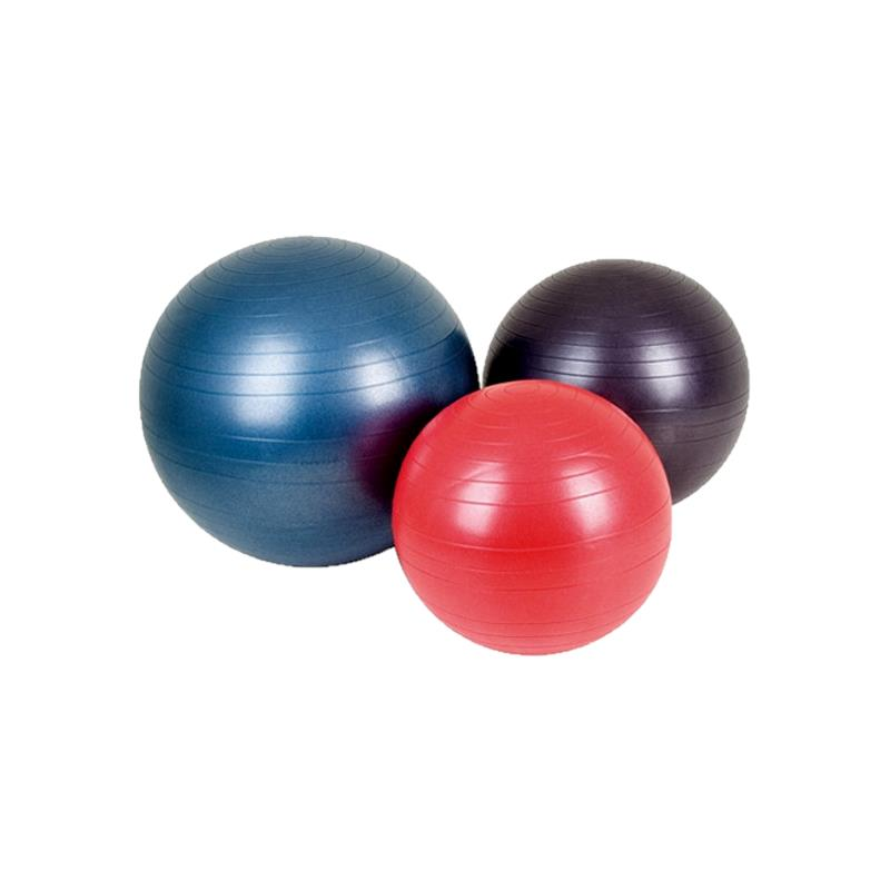 ... & Therapy Fitness products Exercise Balls Aeromat Fitness Ball