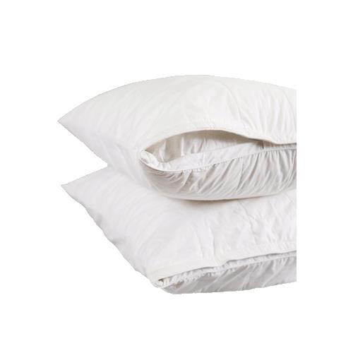 Satin Pillowcase Allergies: Smartsilk Asthma And Allergy Friendly The Pillow Protector