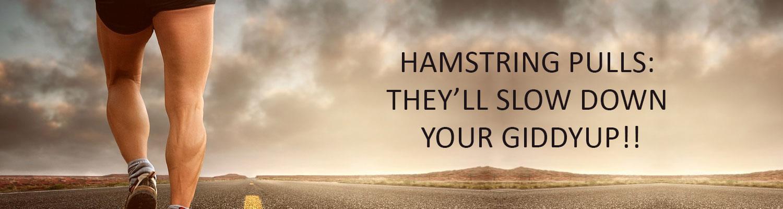 Hamstring Pulls: They'll Slow Down Your Giddyup!!