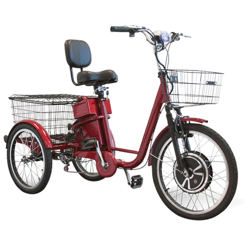 Electric tricycle and have
