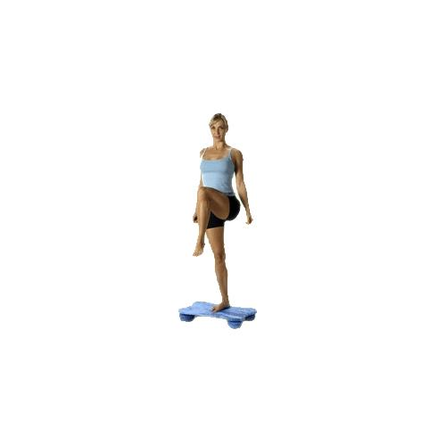 Balance Board Exercises Beginners: Fitterfirst Beginner Rectangle Deck Soft Board