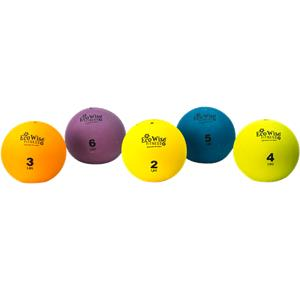 Ecowise Exercise Weight Ball