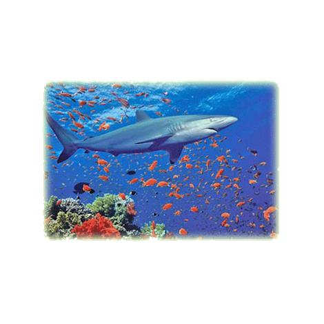 Melissa & Doug 100 Piece Shark Jigsaw Puzzle