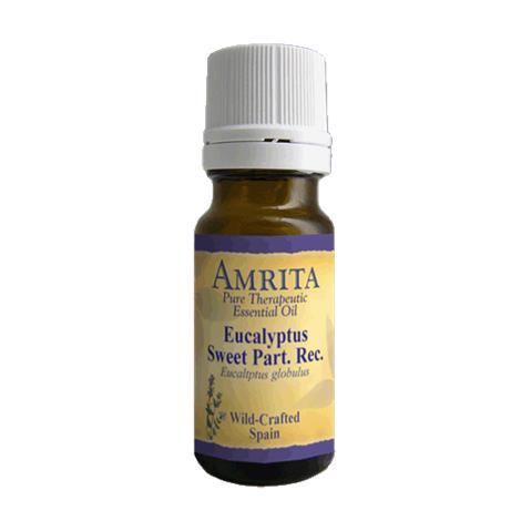 Amrita Aromatherapy Eucalyptus Sweet Partially Rectified Essential Oil