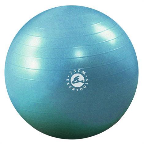 Exertools Burst Resistance Gymball