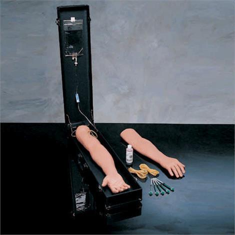 Buy Anatomical Complete IV Training Arm Kit