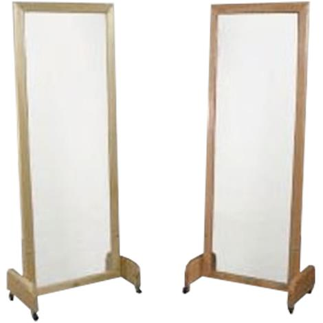 Dynatronics Posture Mirror