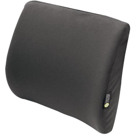 The Comfort Company Premier Comfort Molded Lumbar Support Pad