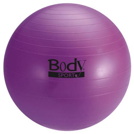 BodySport Standard Fitness Balls