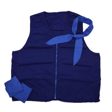Buy Polar Cool Comfort Deluxe Cooling Vest Kit