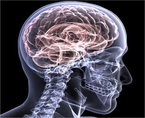 Brain Injury Cognitive