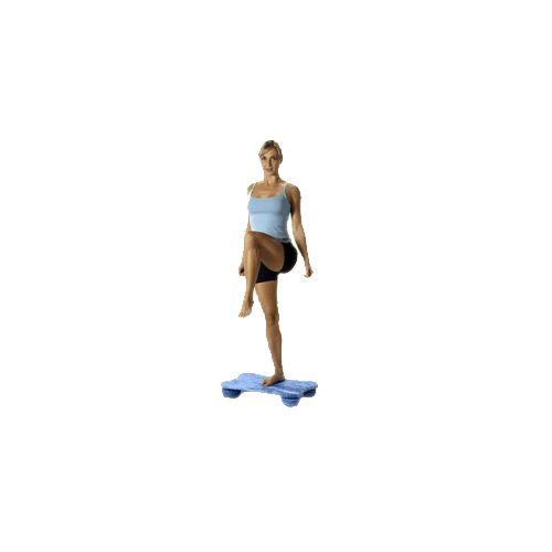 Balance Board Exercises Beginners: Fitterfirst Beginner Rectangle Deck Soft Board By FITTER